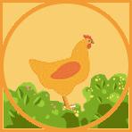 confinement meal menu - chicken